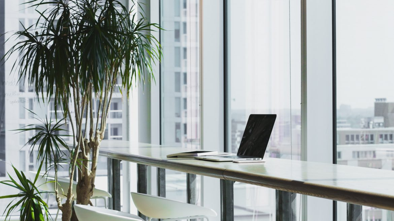 office_plants